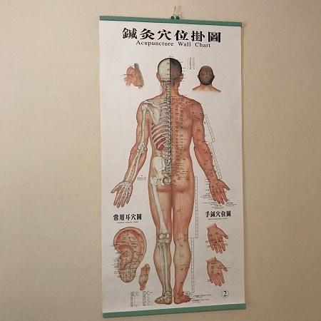 A map of acupuncture points on the human body